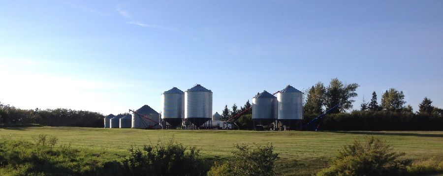 Grain Bin Safety Tips to Protect Workers