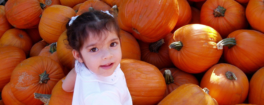 Thanksgiving Safe Travel Tips – Kids and Car Seats