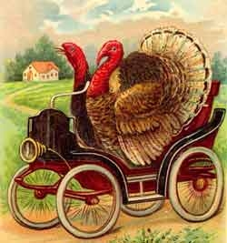 thanksgiving turkeys driving car