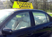 Student Driver car topper