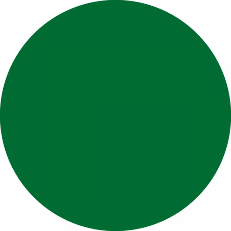 1-1/2 in. One Color Blank Circles - 500 cnt
